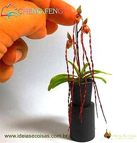 Miniatur Topfblume 4,5 cm Mini Topf Topfpflanze Miniarten Blume im Blumentopf
