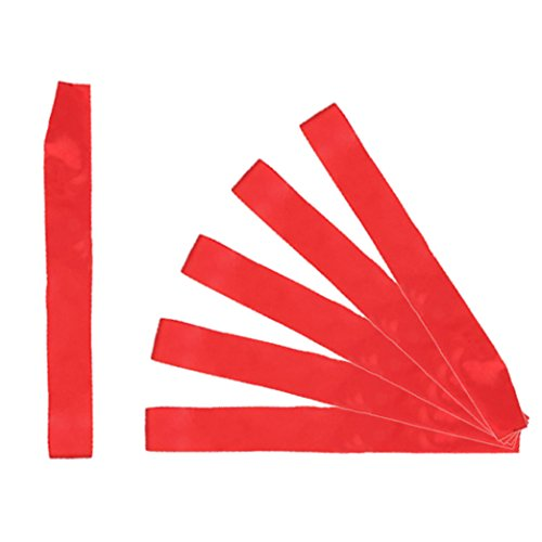 Teemico 6 Pieces Basic Plain Blank Sashes Satin Ribbon,10cm by 160cm ()