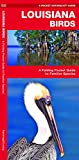 Louisiana Birds: A Folding Pocket Guide to Familiar Species (Wildlife and Nature Identification)