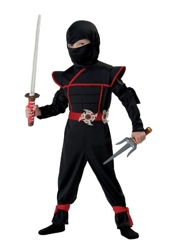 California Costumes Stealth Ninja Toddler Costume, 4-6