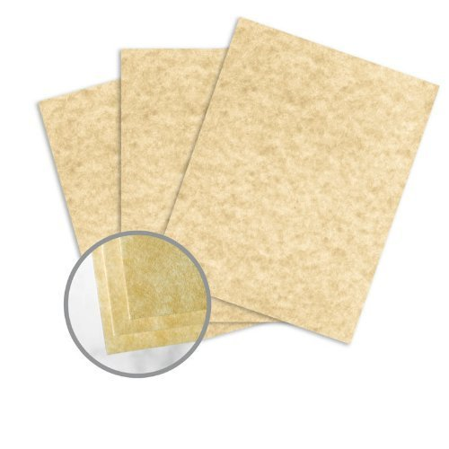 Astroparche Sand Paper - 8 1/2 x 11 in 60 lb Text Vellum 30% Recycled 500 per Ream by Wausau Paper Astroparche