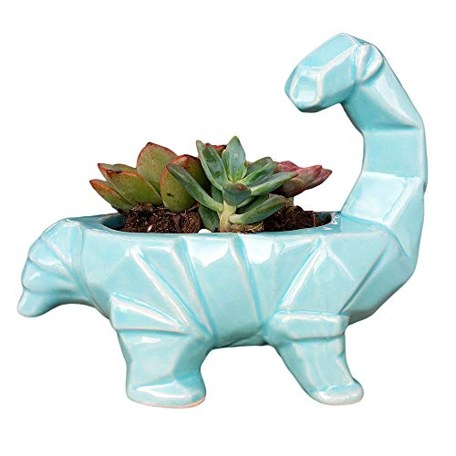 Cute Cartoon Dinosaur Shape Ceramic Succulent Planter, Water Culture Hydroponics Bonsai Cactus Flower Pot, Air Plant Vase Holder 6 Inch Supersaurus