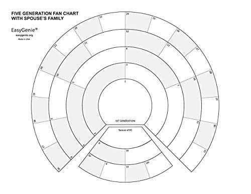Amazon Com Large Print Five Generation Split Fan Charts For