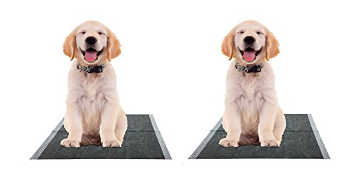 The Green Pet Shop Bamboo Dog Training Pads 100 Count, Super Absorbent Pads with Prolonged Odor Control - Ideal Puppy Training Pads or Incontinence Pads for Senior Pets - 22 x 23 Inches