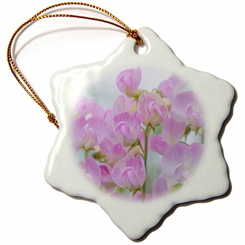 3dRose Danita Delimont - Flowers - USA, Washington, Seabeck. Sweet pea blossoms. - 3 inch Snowflake Porcelain Ornament (orn_209446_1) Sweet Pea Ornament