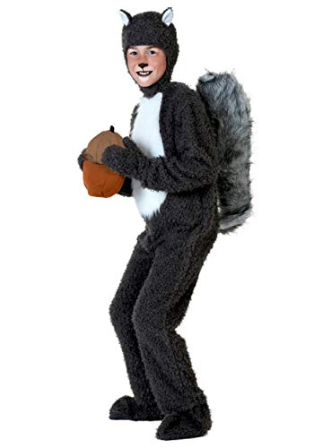 Big Boys' Squirrel Costume Medium ()