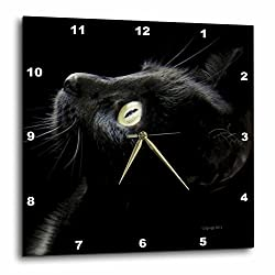 3dRose Black Cat Face - Wall Clock, 15 by 15-Inch (DPP_23822_3)