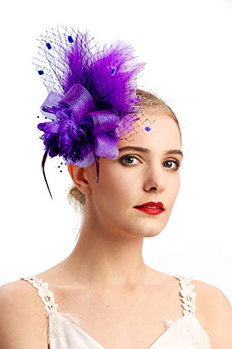 Women's Fascinators Hat Hair Clip Feather Wedding Headware Bridal 1920s -