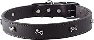 """OmniPet Signature Leather Dog Collar with Bone Ornaments, Sable, 16"""""""