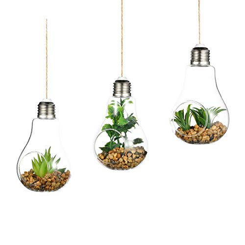 Set of 3 Bulb Terrariums Hanging Glass Planters Indoor Great for Air Plants or Succulents House Ornaments DIY Gift for Living House Ornament (Terrarium Plant Lights)