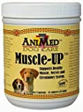 Muscle-Up Powder for Dogs, 16 oz, My Pet Supplies