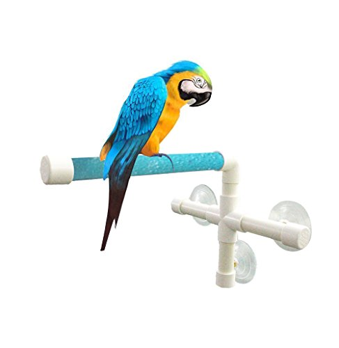 UPGRADE Protable Bird Shower Stand with Suction Cup, Non-...