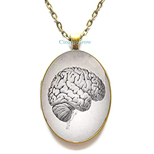 Anatomical Brain Necklace Brain Jewellery Gift for Student Biology Brain Jewelry Science Jewelry Brain Pendant Human Brain Necklace for -
