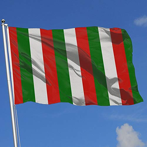 (TAOHJS76 Graphic Outdoor/HomeDemonstration Flag Italy Flag On Knitted Pattern 100% Polyester Single Layer Translucent Flags 3 X)