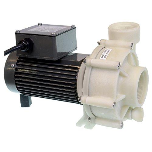 (Reeflo 11141 Utility Dart/Snapper Hybrid Pump)