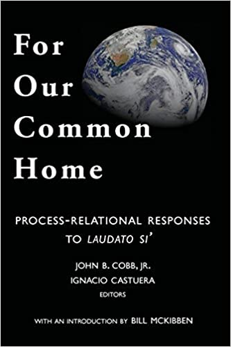 Book For Our Common Home: Process-Relational Responses to Laudato Si': Volume 7 (Toward Ecological Civilization) by John B Cobb Jr (2015-08-25)