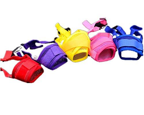 italian muzzle size 10 - 7