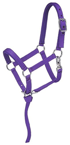 Tough 1 Nylon Padded Miniature Halter, Purple, Large