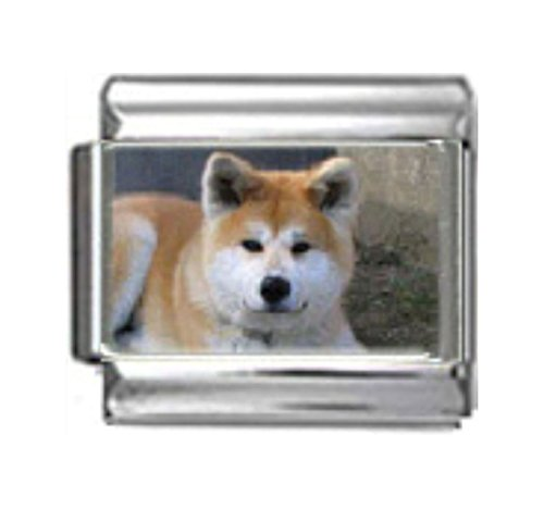 - Stylysh Charms Akita Dog Photo Italian 9mm Link DG028