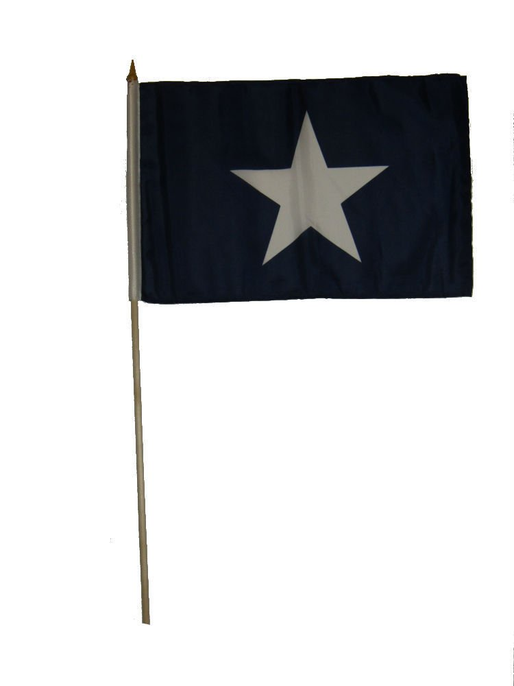 ALBATROS 12 inch x 18 inch (Pack of 12) Historical Bonnie Blue Stick Flag 30in with Wood Staff for Home and Parades, Official Party, All Weather Indoors Outdoors by ALBATROS