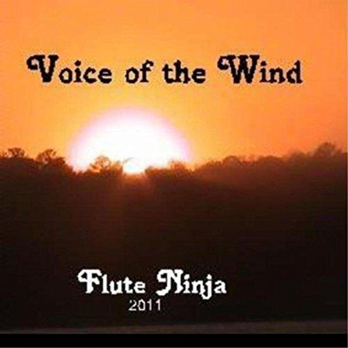 A Ninja's Prayer (Flute Ninja Music)