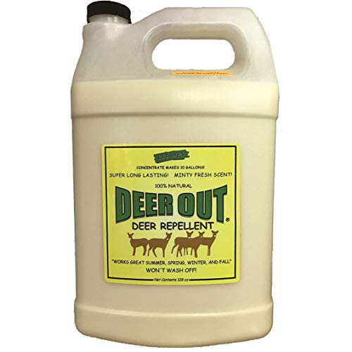 - Deer Repellent :Deer Out 1 Gallon Concentrate Makes 10 Gallons