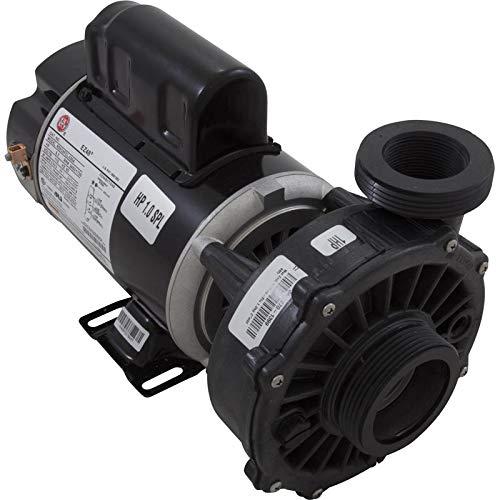 (Waterway Plastics Pump, WW Hi-Flo, 1.0hp Nidec, 115v, 2-Speed, 48fr, 2