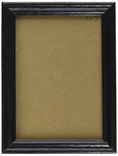 Craig Frames 200ASHBK 18 by 24-Inch Picture Frame, Wood Grain Finish, .75-Inch Wide, Black
