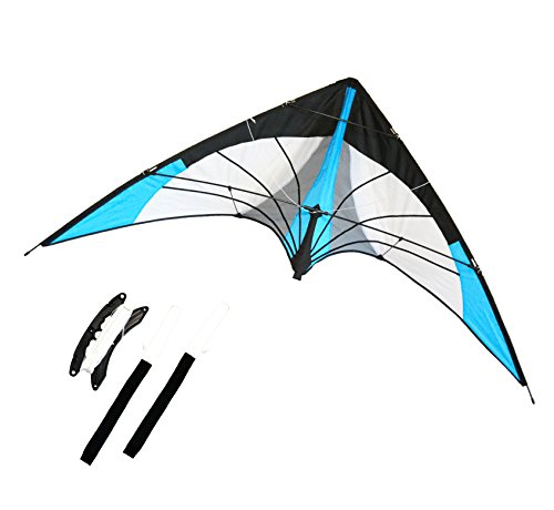 Backyard Stunt Stunt kite