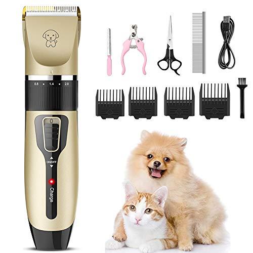 🥇 Productos para mascotas con > cachorrito 2