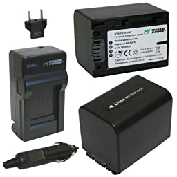 Wasabi Power Battery (2-Pack) and Charger for Sony NP-FV70 and Sony DCR-SR15, SR21, SR68, SR88, SX15, SX21, SX44, SX45, SX63, SX65, SX83, SX85, FDR-AX33, AX100, HDR-CX105, CX110, CX115, CX130, CX150, CX155, CX160, CX190, CX200, CX210, CX220, CX230, CX260V
