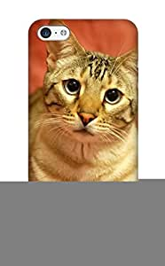 Anettewixom Premium Protective Hard Case For Iphone 5c- Nice Design - Animal Cat