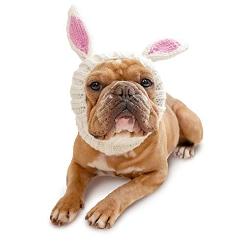 Zoo Snoods Bunny Dog Costume - Neck and Ear Warmer Headband for Pets (Small) -
