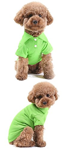 Party Costume And Display Seattle (GohEunGyung shop【Green L】Pet Puppy Summer Shirt Small Dog Cat Pet Clothes Costume Apparel T-Shirt)