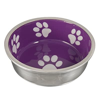 Loving Pets Robusto Bowl for Small Dogs and Cats, X-Small, Violet