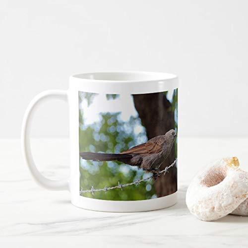 Funny Apostlebird on barb wirec coffee mug 11oz Funny Gift Mug