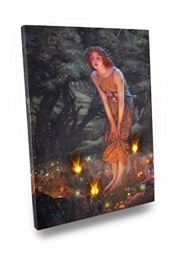 Canvas Prints Midsummers Eve Fairy Art Led Accent Printed Canvas Wall Hanging X 0.5