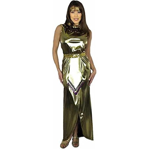Adult Lame Cleopatra Costume (Size: Medium 8-10)