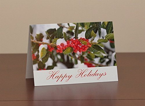 Happy Holidays Greeting card set - Holly Berries in Snow blank note cards - photo Christmas card set