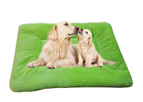 Happy- little -bear Tappetino per Cuscino per Gatti e Gatti Super Soft Small Pet Dog (verde, M)
