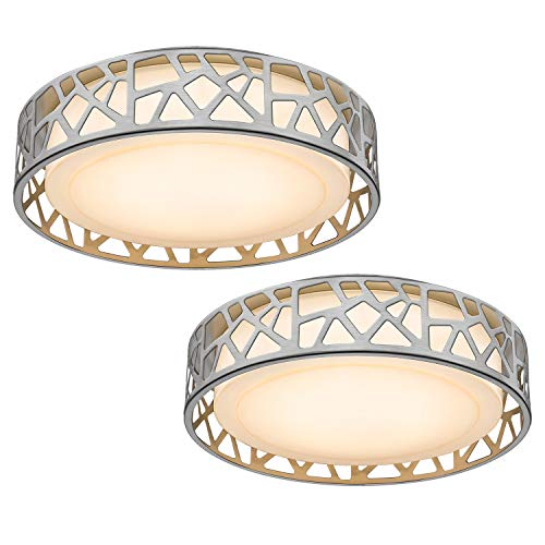 Ceiling Light Fixtures 2 Pack, VICNIE 14 inch 20W 1400 Lumens LED Flush Mount, Dimmable 3000K Warm White, Brush Nickel Finished, ETL Listed Metal Body Acrylic Lampshade