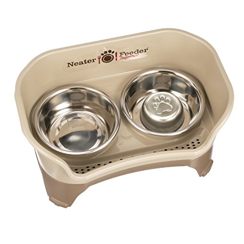 Neater Feeder Express (Medium to Large Dog, Champagne) & Slow Feed Bowl Combination Package