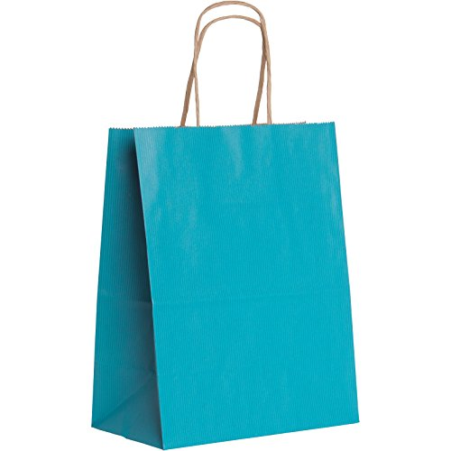 Jillson Roberts BMK947.1 Bulk 250-Count Medium 8'' x 10.5'' x 4.75'' Recycled Kraft Bags Available in 20 Colors, Robin's Egg by Jillson Roberts