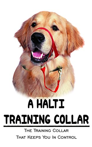 A Halti Training Collar: The Training Collar That Keeps You In Control