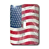 3dRose LLC lsp_41185_1 Sunflower Use Flag-America-Patriotic Single Toggle Switch
