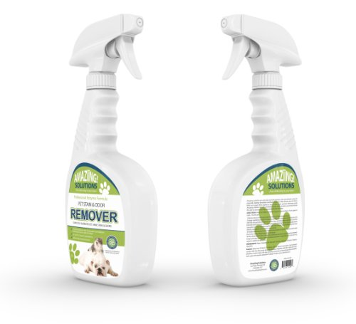 Dog Urine Carpet Stain Removal: Amaziing Solutions Pet Odor Eliminator And Stain Remover