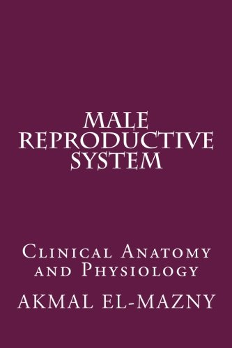 Male Reproductive System: Clinical Anatomy and Physiology
