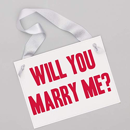 Will You Marry Me Sign For Wedding Proposal Pink & Red Romantic Proposing Banner | Engagement Banner | Engagement Prop Silver Ribbon Pink and Red Ink on White Paper -