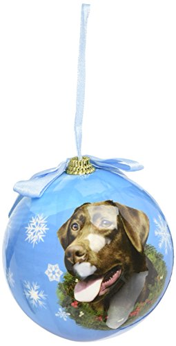Chocolate Lab Christmas Ornament Shatter Proof Ball Easy To Personalize A Perfect Gift For Chocolate Lab Lovers