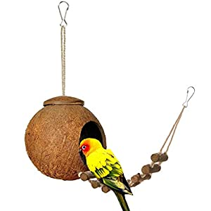 Flaqurily Natural Coconut Hideaway with Ladder,Natural Bird Nest House,Bird Toy and Small Animal Toy 13